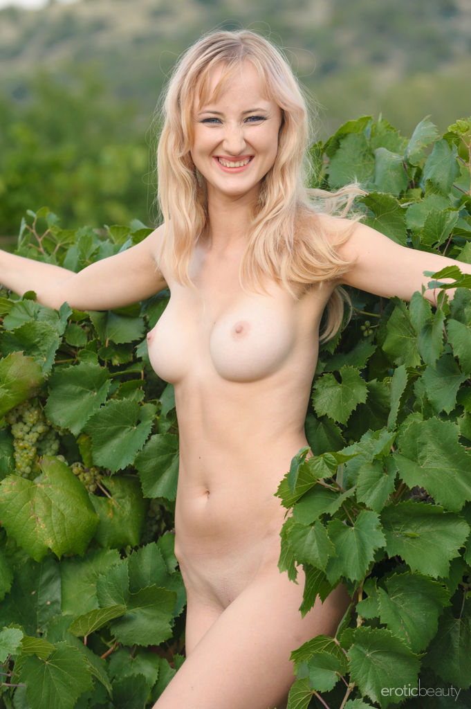 Hot Blonde Zemira A in Wine Country